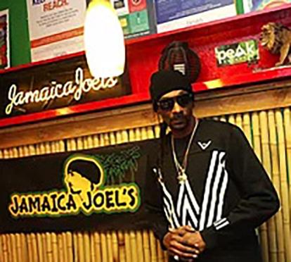 snoop-dogg-vapordave-logo-jamaica-joels